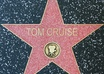 write your name/business name on  a star in Hollywood walk of fame small2