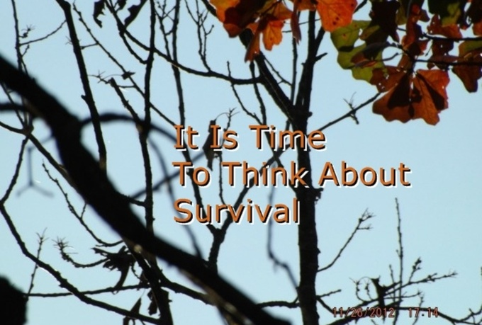 write 300 words on Prepping, Surviving Natural Disasters, Wilderness Survival