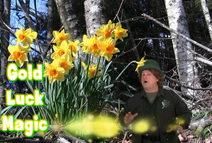 be your magical Leprechaun on video