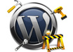 fix one minor problem on your Wordpress blog or add a function or feature small1