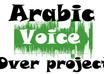 put My Arabic Voice Over Your Project up to 2 mins