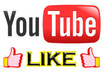 give you 2500+ read Youtube Views, 70 likes