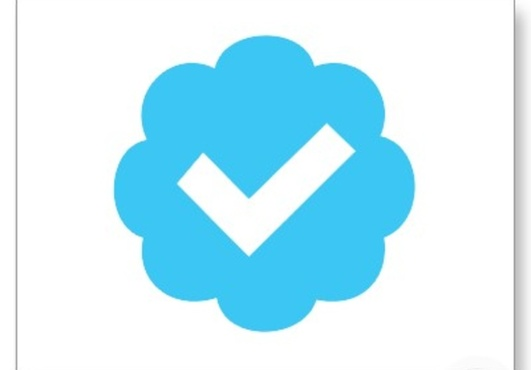 Follow you from my verified twitter in less than 24hrs fiverr