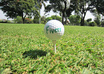 make a 10 seconds HD video with a short message written on a new golf ball and hit it perfectly just for you small1