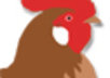 Chicken_logo