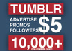 promote you on my tumblr and twitter with over 20k real active followers