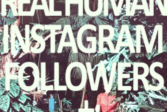 Free Instagram Followers No Like For A Shoutout Instagram