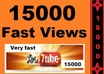 give you guaranteed 15,000+ fast youtube views