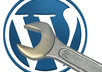 send you a complete wordpress video tutorial package 23 videos 30 hand picked plugins and 50 nice themes