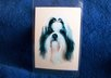 mail you 2 Shih Tzu dog luggage tags small1