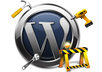 fix any problem on your website, wordpress or any cms platform,