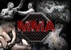 create a permanent backlink to your site on my popular MMA ufc homepage small1